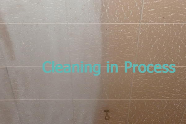 ceiling-cleaning-example